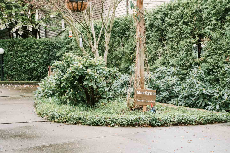 Marilyn's Secret Garden